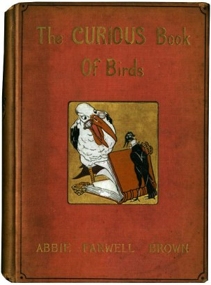 Curious Book of Birds - Cover