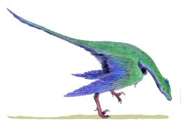 Anwers Book Chapter 1 – Did Dinosaurs Turn intoBirds?