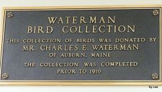 Waterman Bird Collection BJU 2018 Plaque