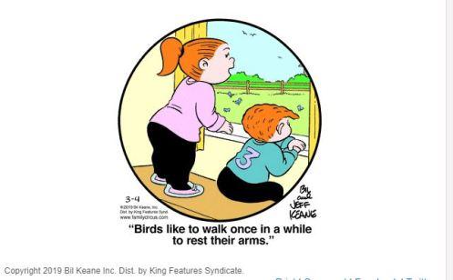 Family Circus - Birds Walking