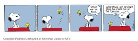 Snoopy and Woodstock - Spring Migration